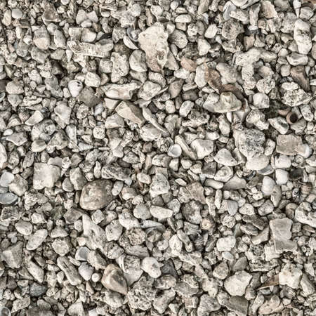 natural background and texture of a river shore: gravel, rocks and shells, black and white image