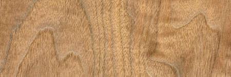 background and texture of wood veneer - walnut tree, panoramic web banner