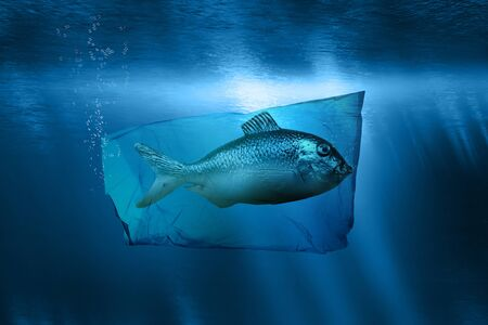 A fish is trapped underwater in a plastic bag