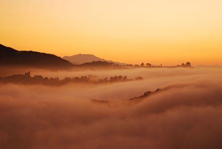Sonne �ber Los Angeles Nebel