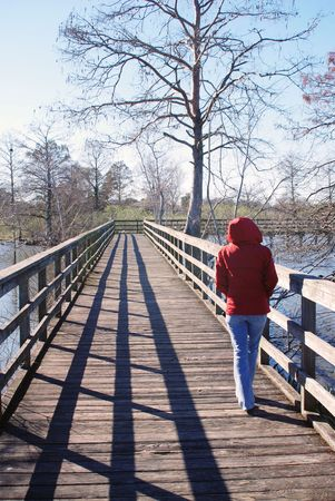 leisurely: Lady in red coat, hooded and great legs taking a leisurely stroll over the murky waters of the swamp in Louisiana. Stock Photo