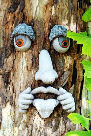 Facial Expressions of a tree. 免版税图像