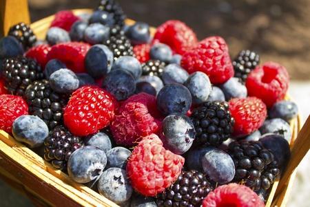 Berry Basket Banco de Imagens