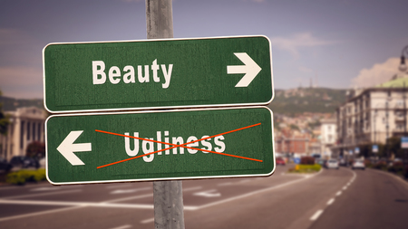 Street Sign Beauty versus Ugliness