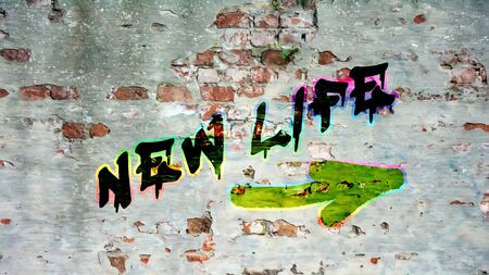Wall Graffiti NEW LIFE