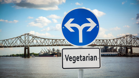 Street Sign the Direction Way to Vegetarian