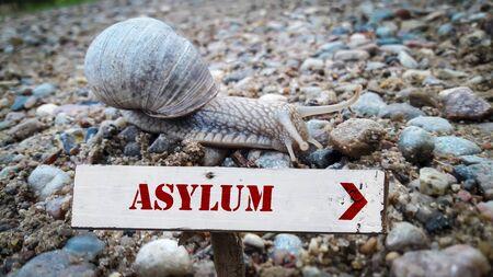 Straßenschild Richtung Asylum Asyl