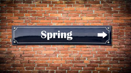 Street Sign the Direction Way to Spring Imagens