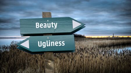 Street Sign the Direction Way to Beauty versus Ugliness