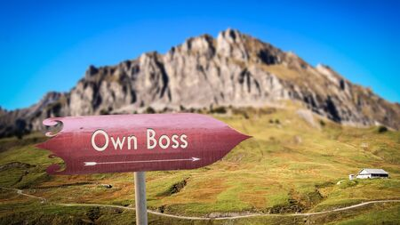 Street Sign the Direction Way to Own Boss