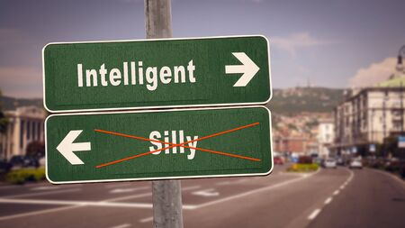 Street Sign the Direction Way to Intelligent versus Silly