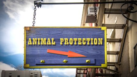 Street Sign the Direction Way to Animal Protection