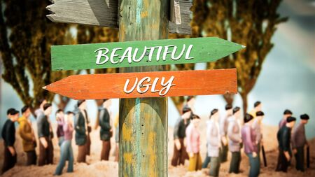 Street Sign the Direction Way to Beautiful versus Ugly 스톡 콘텐츠 - 128459972