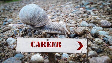 Street Sign the Direction Way to Career Stock fotó