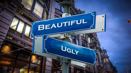 Street Sign the Direction Way to Beautiful versus Ugly 스톡 콘텐츠