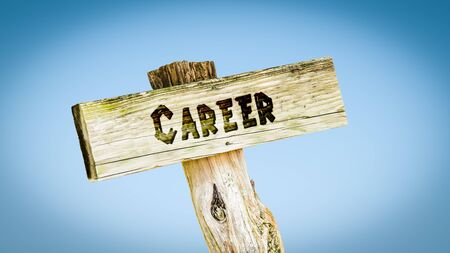 Street Sign the Direction Way to Career Фото со стока