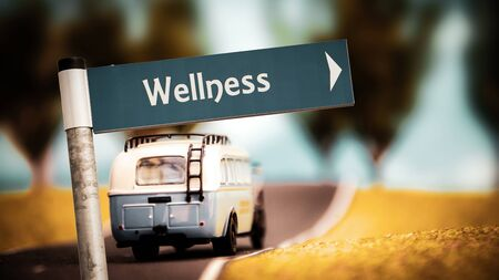 Street Sign the Direction Way to Wellness Stock Photo