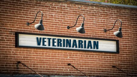 Street Sign tne Direction Way to Veterinarian