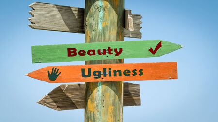 Street Sign the Direction Way to Beauty versus Ugliness 스톡 콘텐츠 - 130811465