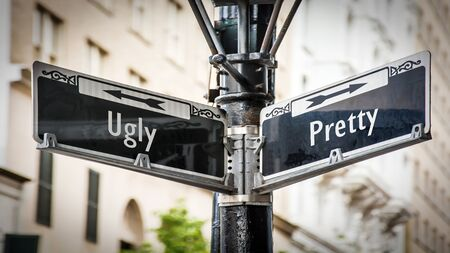 Street Sign the Direction Way to Pretty versus Ugly 스톡 콘텐츠 - 133693126