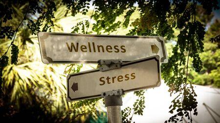 Street Sign the Direction Way to Wellness versus Stress Фото со стока - 134349446