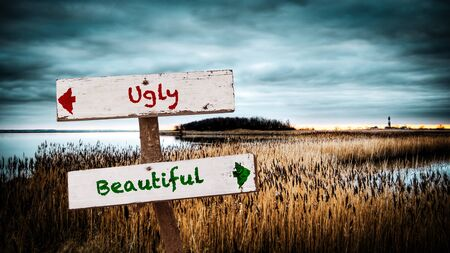Street Sign the Direction Way to Beautiful versus Ugly Reklamní fotografie