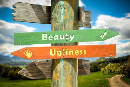 Street Sign the Direction Way to Beauty versus Ugliness 스톡 콘텐츠 - 134850278
