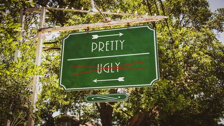 Street Sign the Direction Way to Pretty versus Ugly
