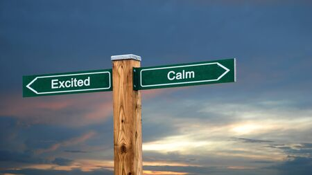 Street Sign the Direction Way to Calm versus Excited 版權商用圖片