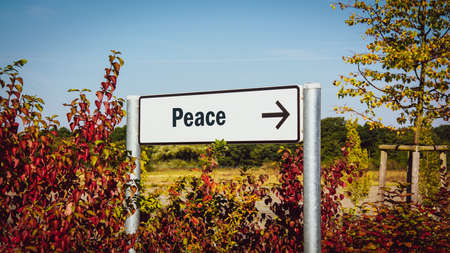 Street Sign the Direction Way to Peace 스톡 콘텐츠