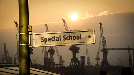 Street Sign the Direction Way to SPECIAL SCHOOL