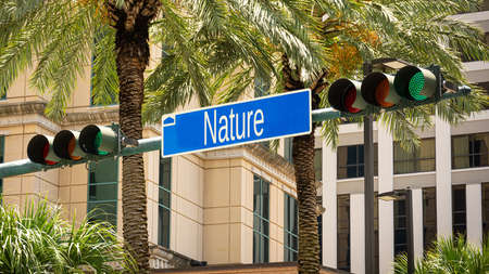 Street Sign the Direction Way to Nature