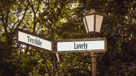 Street Sign the Direction Way to Lovely versus Terrible