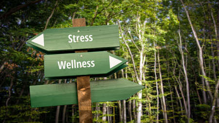 Street Sign the Direction Way to Wellness versus Stress