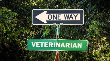 Street Sign tne Direction Way to Veterinarian