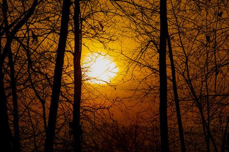 Orange glow sunset Stockfoto - 114655213