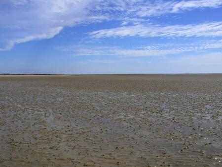 wadden sea: Wadden Sea island of Foehr