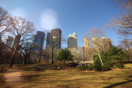 Buildings seen from Central Park, New York, United States