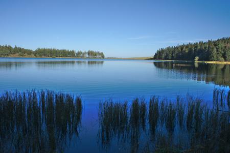 Cielo azul reflejándose en el lago Servidores en Auvernia con un primer plano de plantas acuáticas