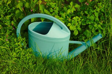 green watering can in the high grass - gardening. Banco de Imagens