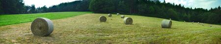 Panoramic shooting, cylindrical hay bales in the meadows in spring in Auvergne, Puy-de-Dome 版權商用圖片 - 124989443