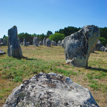 Carnac, alignments of Celtic menhirs. Brittany, Morbihan. la France