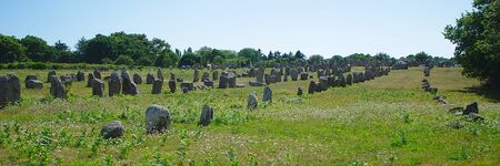 panoramic view of alignments of menhirs of Carnac, Brittany; Morbihan; la France
