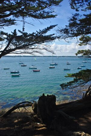 coastline, seaside, beach and boats on the island of the monk in Brittany in the Morbihan. la France
