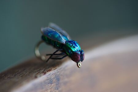 artificial fly for fishing, fly imitation domestic blue-green brilliance in close-up