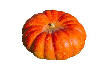 halloween cut orange pumpkin, isolated