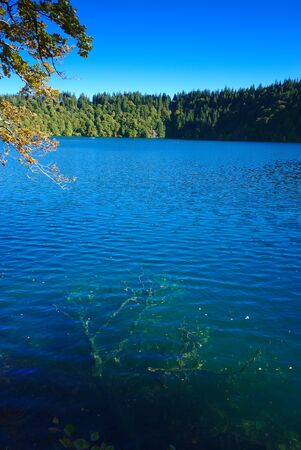 view of Pavin lake in Auvergne, volcanic lake, Puy-de-Dome; France