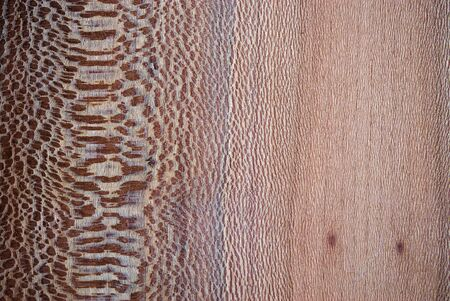 wood texture with ribs, close up