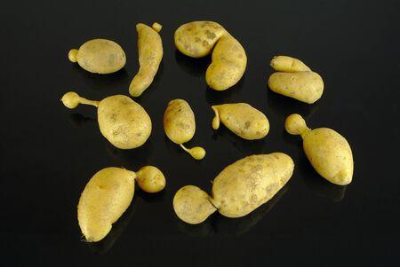 deformed organic potatoes on a black background