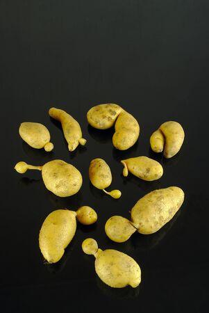 deformed organic potatoes on a black background 写真素材